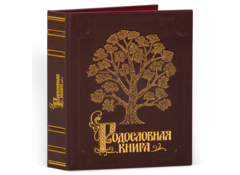 Родословная книга Изысканная с золотой росписью